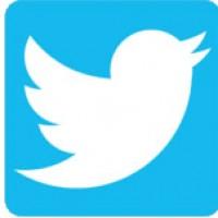 Follow Sarah Hayward on Twitter